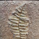 Гипсовый декоративный камень Валенсия